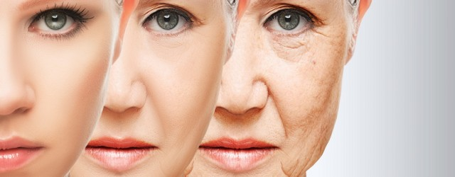 Homemade Anti Wrinkle Mask