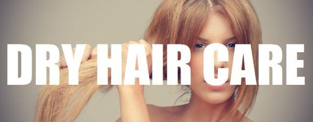 Dry Hair Care 1
